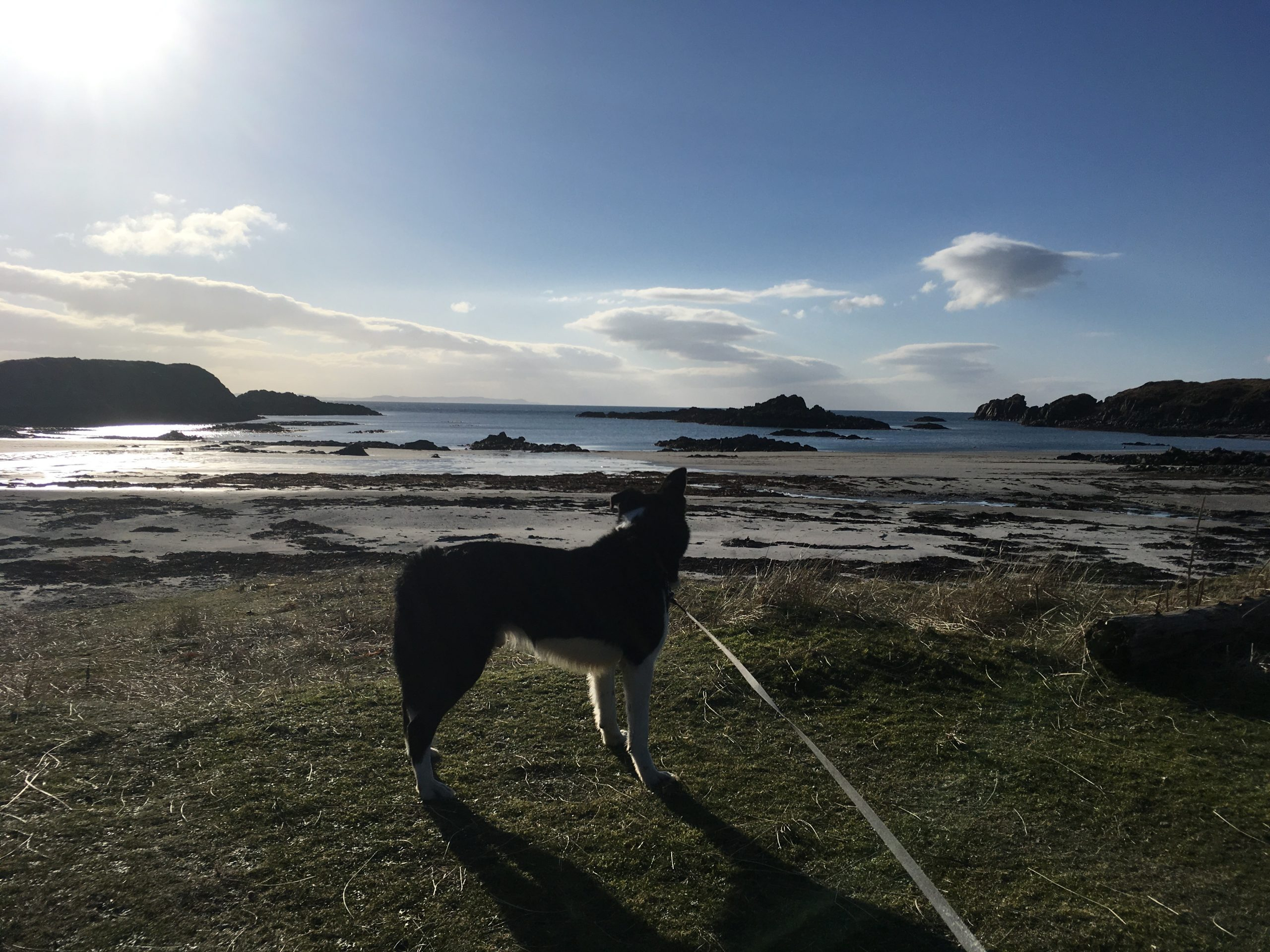Covid and the Isle of Mull